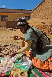 Doña Viviana, from the community of Cachilaya, showing some of her potato and quinoa varieties. Image credit: Giulia Maria Baldinelli