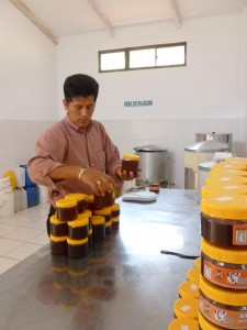 Felix working at FUNDACOM, a honey processing association in Coroico.
